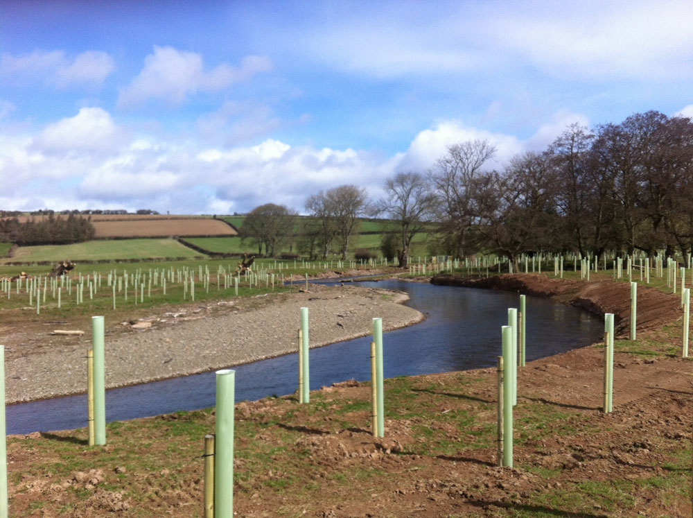 Planting New woodland at Croxton