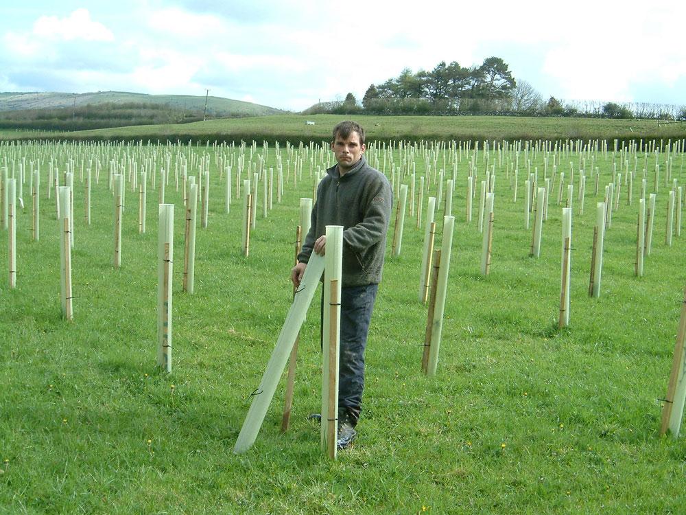 Steve Dawson Planting Woodland
