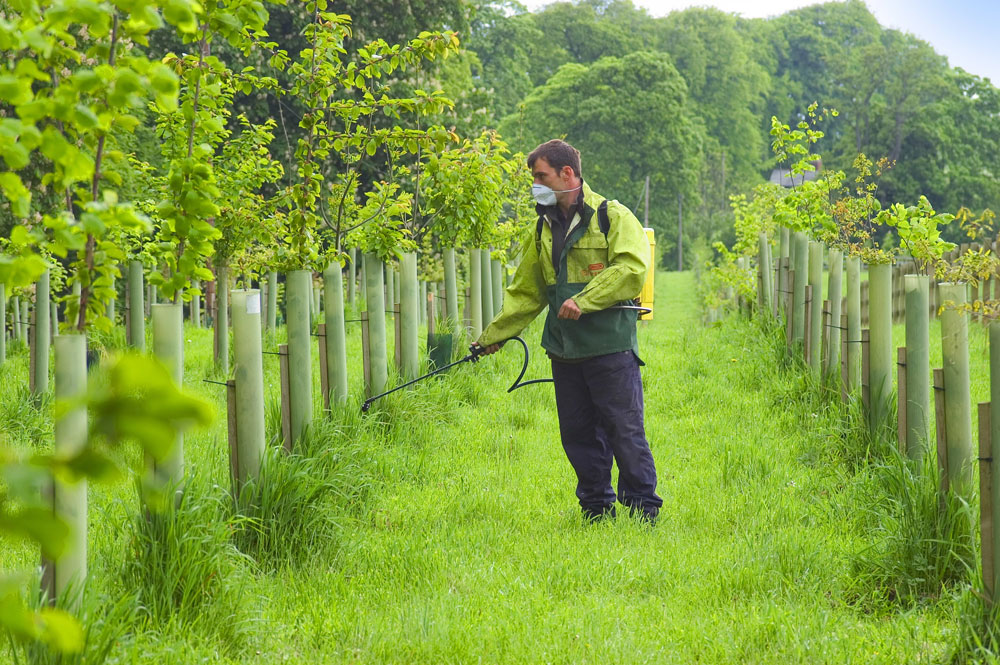 Steve Dawson: Spraying newly Planted Woodland