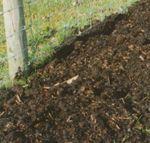 Tree planting compost