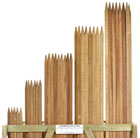 Trees stakes